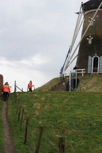 Trai zur Windmühle