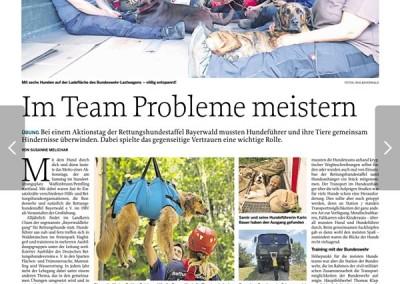 Bericht Mittelbayerische Zeitung vom 05 06 2019